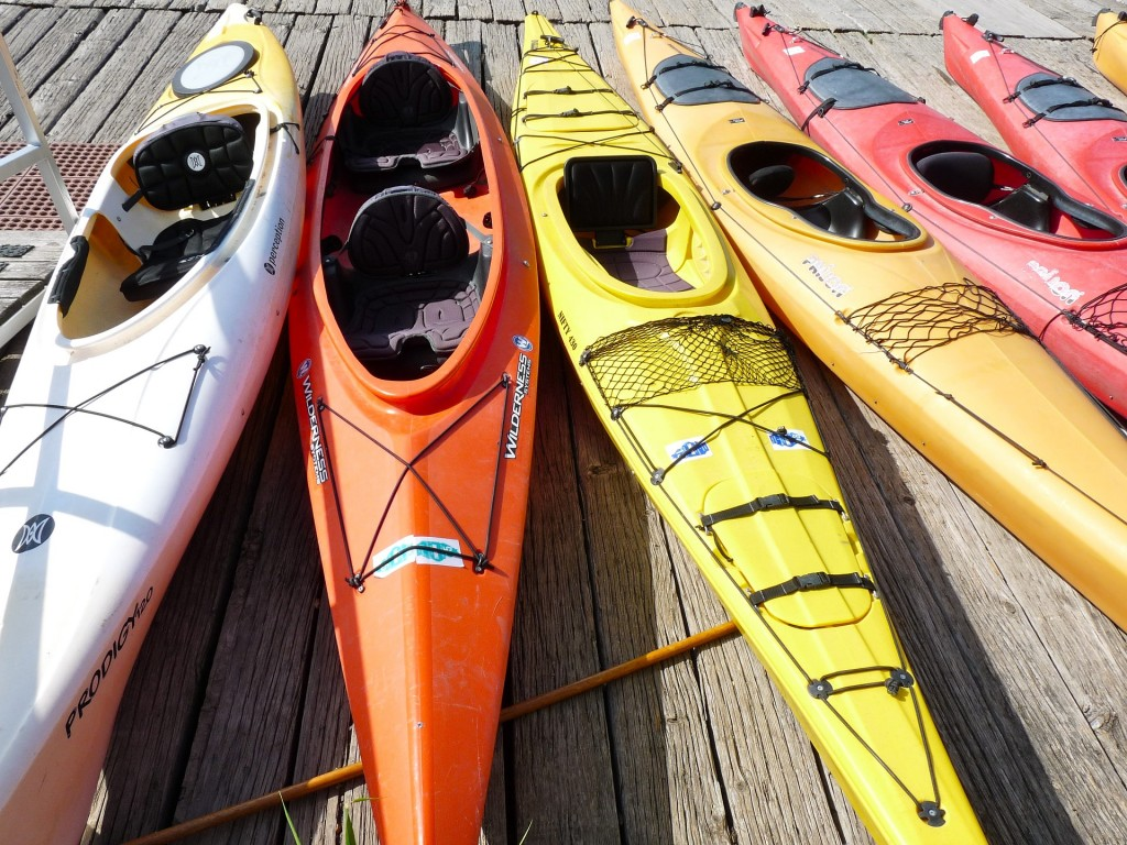 Rent a few kayaks on the Esplanade and enjoy the city views from the river.