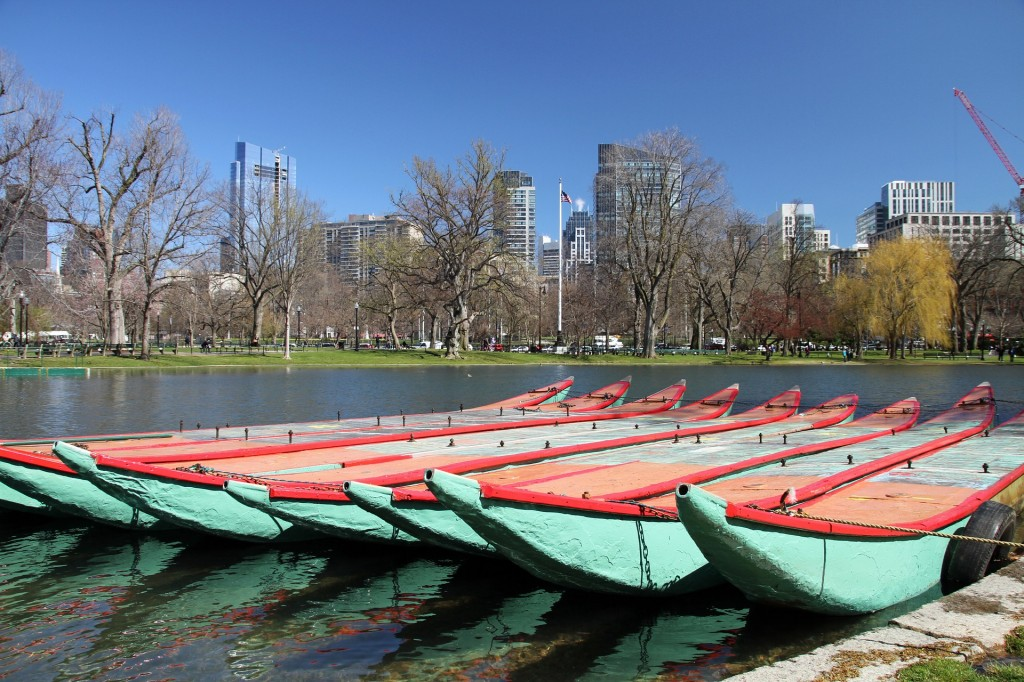 Rent a boat from the Boston Common launch on a sunny day.